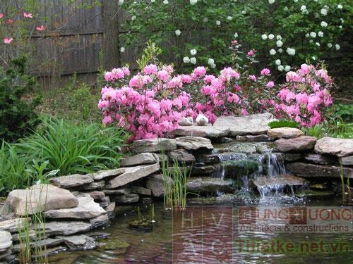 Thiết kế hồ nước trong vườn